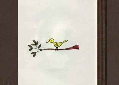 Aves de los Andes